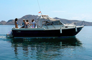 Mersea Le Petite Speed Boat