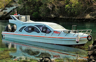 Oceanic Speed Boat