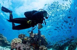 Raja Ampat Diving 5D/4N