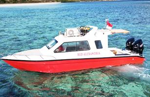 Red Alexandria Cruise