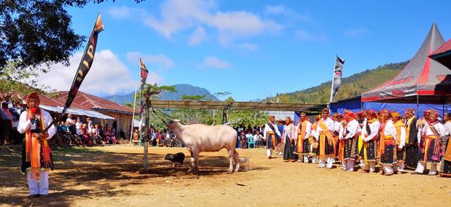 Gendang Mbero Nangka Held Congko Lokap Event