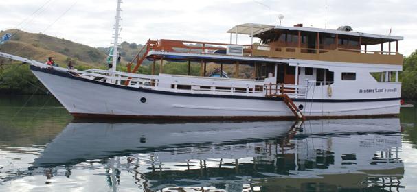 Bintang Laut Boat