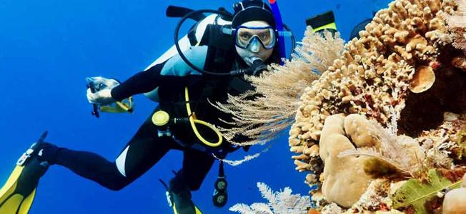 Bunaken Scuba Diving