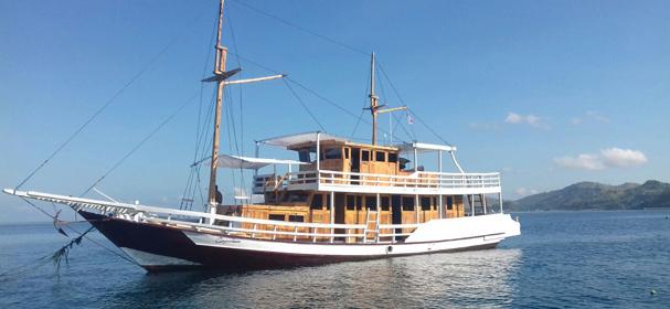 KLM Carpediem Boat