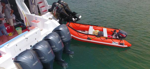 Komodo Speed Boat Charter
