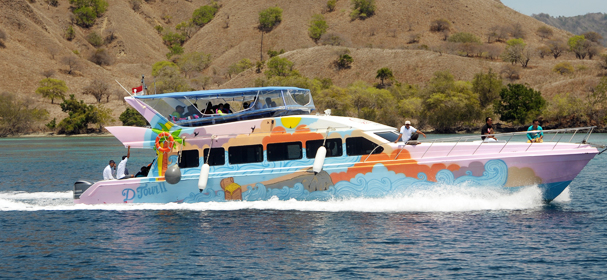 Dtour 2 Fast Boat Charter