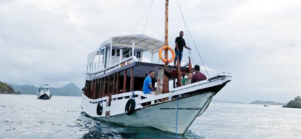 Komodo Dive Flores Boat Charter