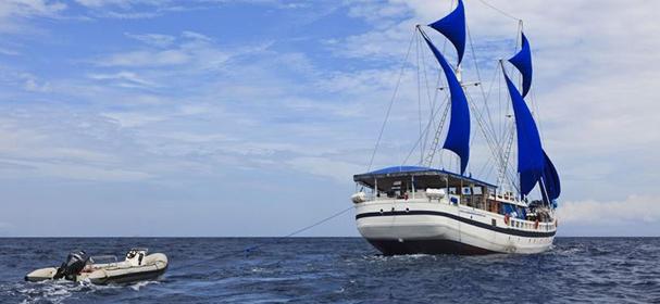 MV Indo Siren Phinisi