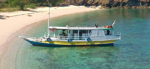 KLM Alena Boat Komodo