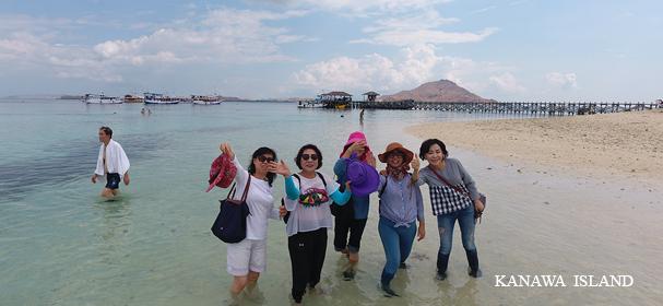 Kanawa Island Tours