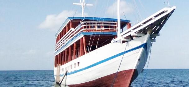 Lambo Rajo Boat Charter
