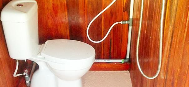 KL Narang Ballaung Toilet