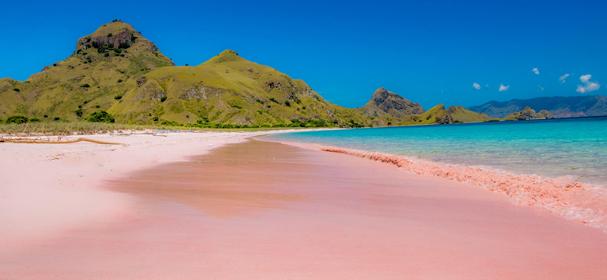 Pink Beach Komodo Flores