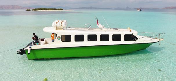 Poco Rana Speed Boat