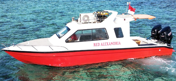 Red Alexandria Fast Boat Charter Komodo Island Indonesia