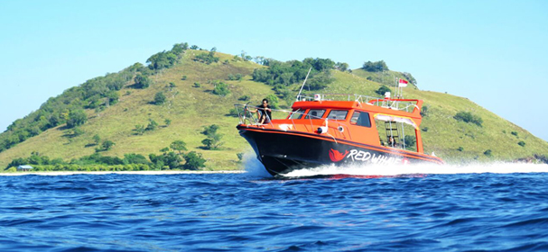 Komodo Red Whale Speed Boat