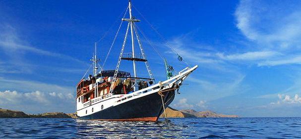 MV Tarata Boat Charter