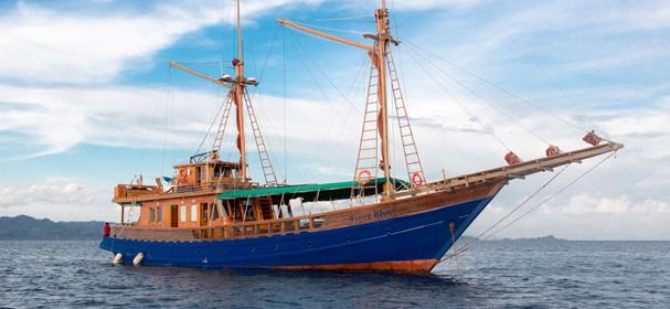 Tiger Blue Komodo Boat Charter