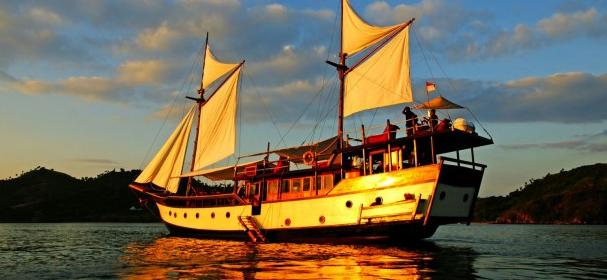 Wunderpus Boat