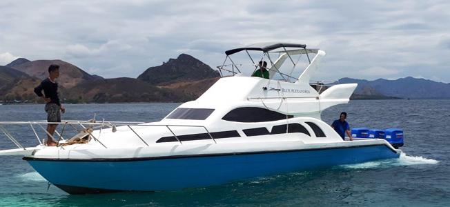 Blue Alexandria Fast Boat