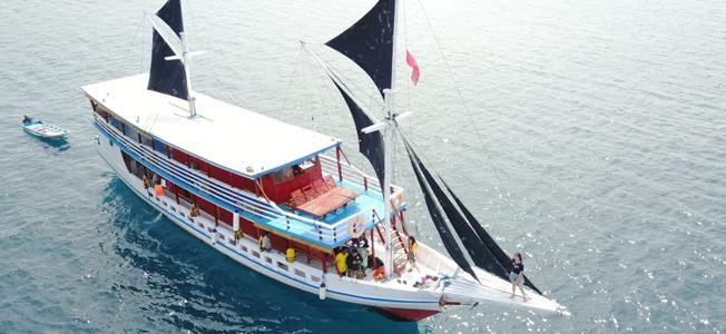 Lamborajo Boat Charter