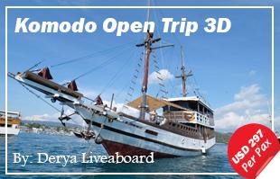 Open Trip Derya Liveaboard 3D/2N