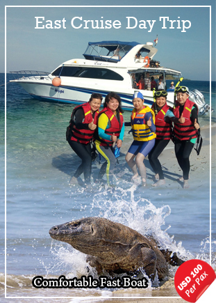 Joint Trip East Cruise Komodo