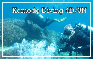 Komodo Diving Tour 4D/3N