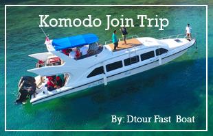 Dtour Komodo One Day Tour